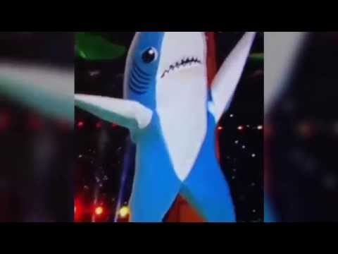 Sad Shark  ||  Le Club