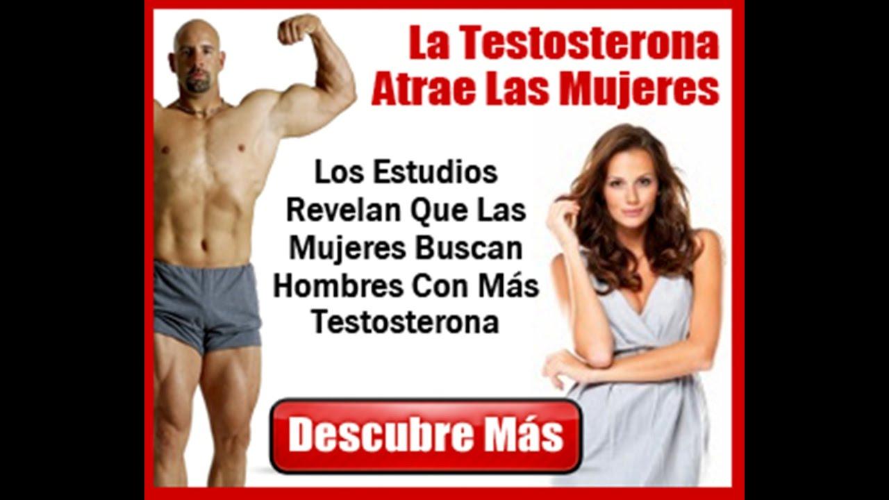Mas testosterona en 31 dias libro pdf descargar youtube - Alimentos con testosterona ...