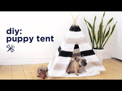 diy-puppy-/-pet-tent-|-the-sorry-girls