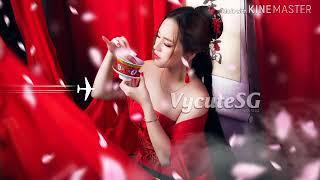 Nonstop2019-Chú Báo Hồng remix