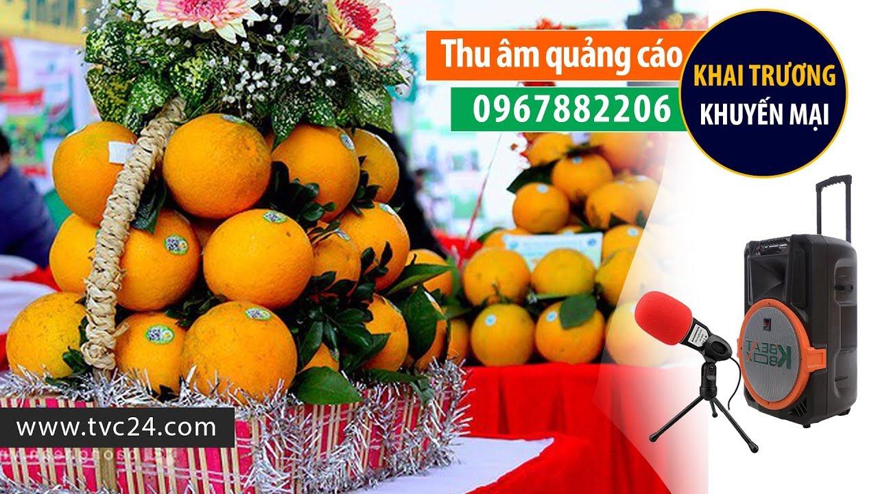 Thu âm quảng cáo bán hàng Cam Vinh nhà vườn Thiện Ánh