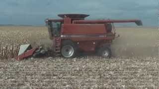 case ih 2388 combine with geringhoff 830 corn head and brent 674 grain cart fall harvest corn 2012