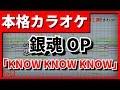 【歌詞付カラオケ】KNOW KNOW KNOW(DOES)(銀魂゜OP)【野田工房cover】