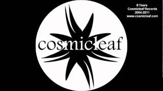 8 Years Cosmicleaf (Dj Mix by Side Liner) - 60 minutes Chill Out Music