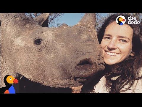 Girl Is Mom to Baby Rhinos | The Dodo thumbnail