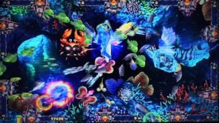 Tiger Strike Skilled Fish-Dragon Hunting Video Arcade Fishing Game Machine