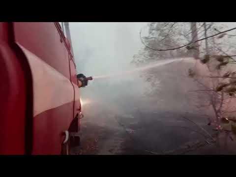 Триває гасіння пожеж сухої трави та лісової підстилки у Луганській області