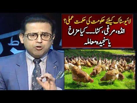 Pakistan Current Govt Took Initiative Towards Livestock Farming? | Bedharak