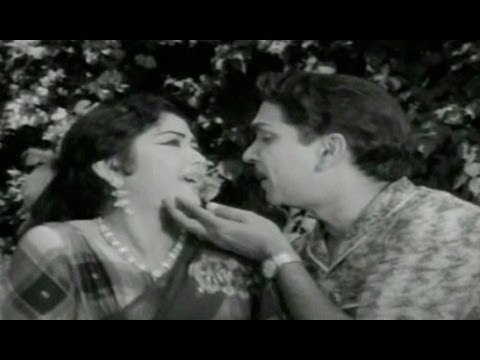 Zamindar Movie Songs | Aa Navvula Kosame | ANR | Krishna Kumari