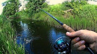 Вот так рыбалка в ручье!!!В этом ручье полно рыбы!Рыбалка на спиннинг.