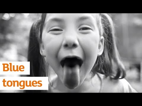 Blue tongues | Sainsbury's Ad | Summer 2017