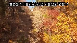 대구 팔공산 케이블카 단풍구경