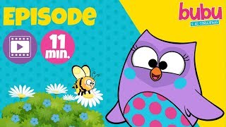 Buzz, buzz, buzz! - Full Episode - Bubu and the Little Owls