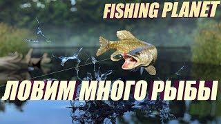 РЫБАЛКА   Рыбалка на спиннинг   Рыбалка на Блесну   Ловим много рыбы.