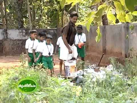 Biodiversity conservation initiatives of the Govt. L P School at Kodaly, Thrissur.