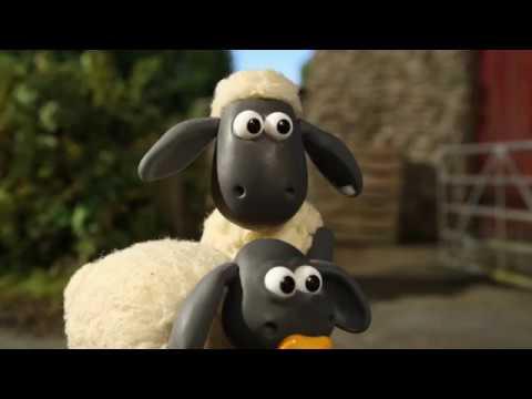 كرتون شون ذا شيب جديد 2019 Shaun The Sheep Youtube