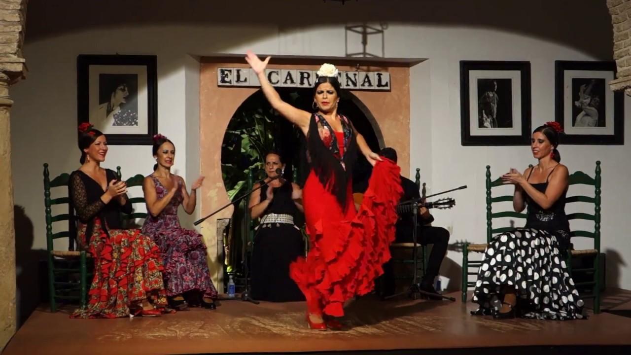 flamenco fantástico at el cardenal in córdoba spain amazing