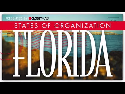 States of Organization