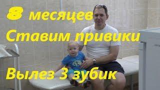 Гепатит В2. Прививки ребенку в 8 месяцев. Вылез 3 зуб!!!