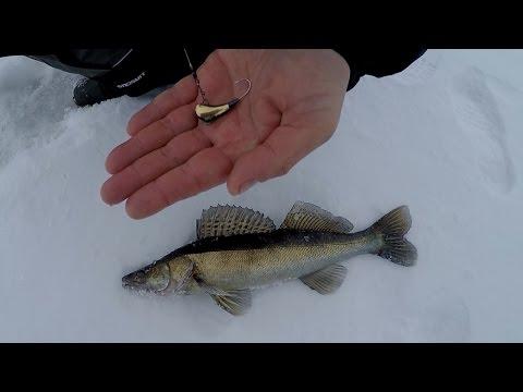 зимняя рыбалка в самарской области на судака