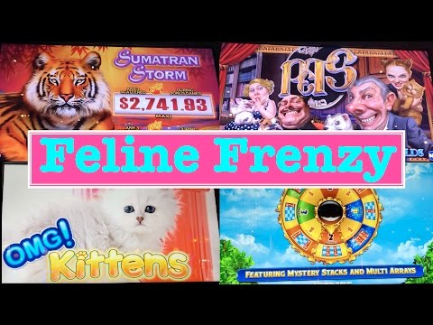 **BIG WINS!!!/BONUSES!!!** Macaw Money & Prowling Panther Slot Machines from YouTube · Duration:  6 minutes 37 seconds  · 5 000+ views · uploaded on 15/12/2016 · uploaded by Dr. Nick's Slot Hits
