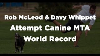 Ctv News Calgary - Rob Mcleod And Davy Whippet Attempt Canine Mta World Record