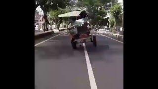 Video Heboh Kuda Ngamuk Di Jalanan Lucu ABIS!