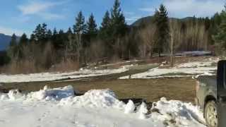 Sunstone Ridge Pemberton Development Site For Sale