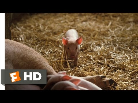 Charlotte's Web (1/10) Movie CLIP - Fern Saves Wilbur (2006) HD