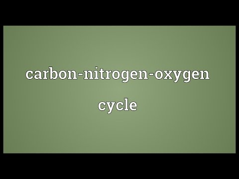 Carbon-nitrogen-oxygen cycle Meaning