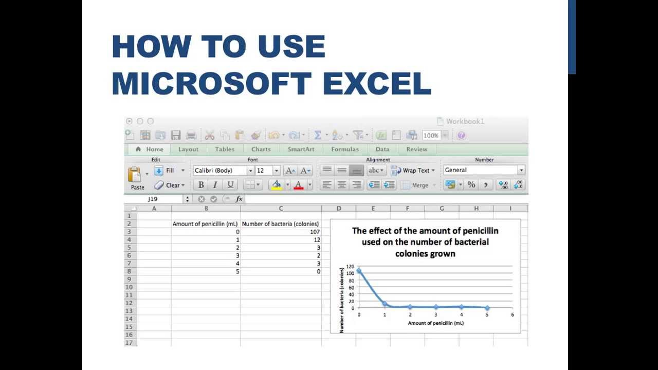 how to input data and graph using excel