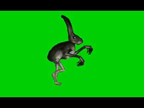 humanoid rabbit green screen jumpscare.