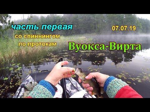 деревня Ромашки - рыбалка в протоках Вуокса-Вирта на спиннинг 07.07.19