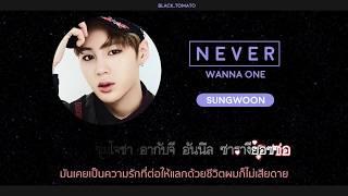 Karaoke Thaisub NEVER - WANNA ONE