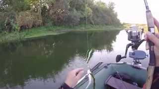 Риболовля сплавом на річці Стир