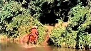 Garden of Evil, Starring Susan Hayward, Clip 2