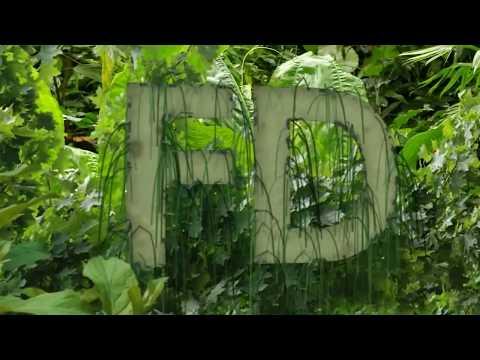 015-Forest/forêt - FLASH DESIGN