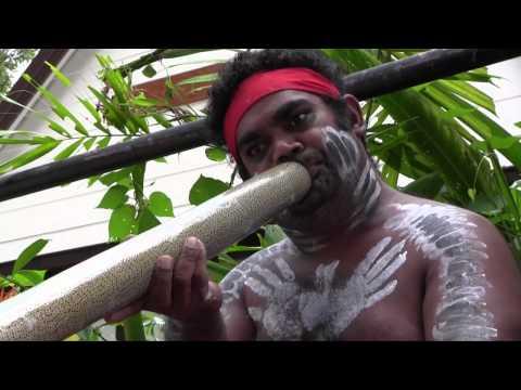 Kuranda Village - Butterfuly Santuary & Koala Garden Zoo