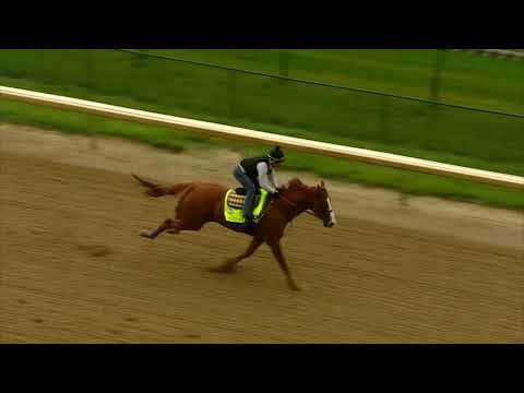 Justify Breeze May 29, 2018