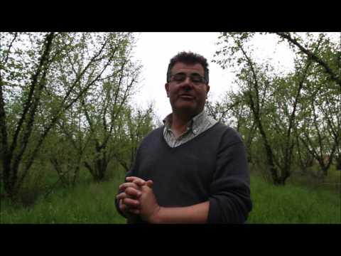 Patrick Chassac, l'agro-écologie appliquée en arboriculture fruitière