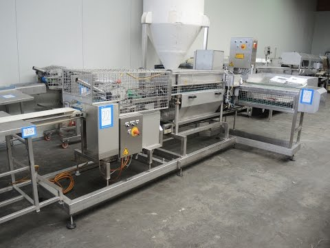 Fieret automatic herring cleaning line