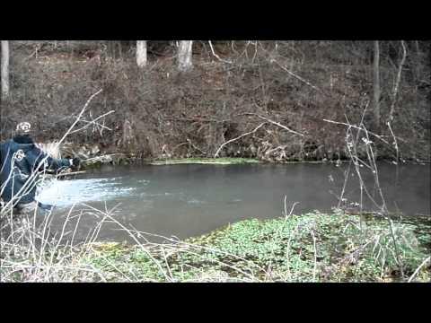 26 inch Spring Creek Brown- PA
