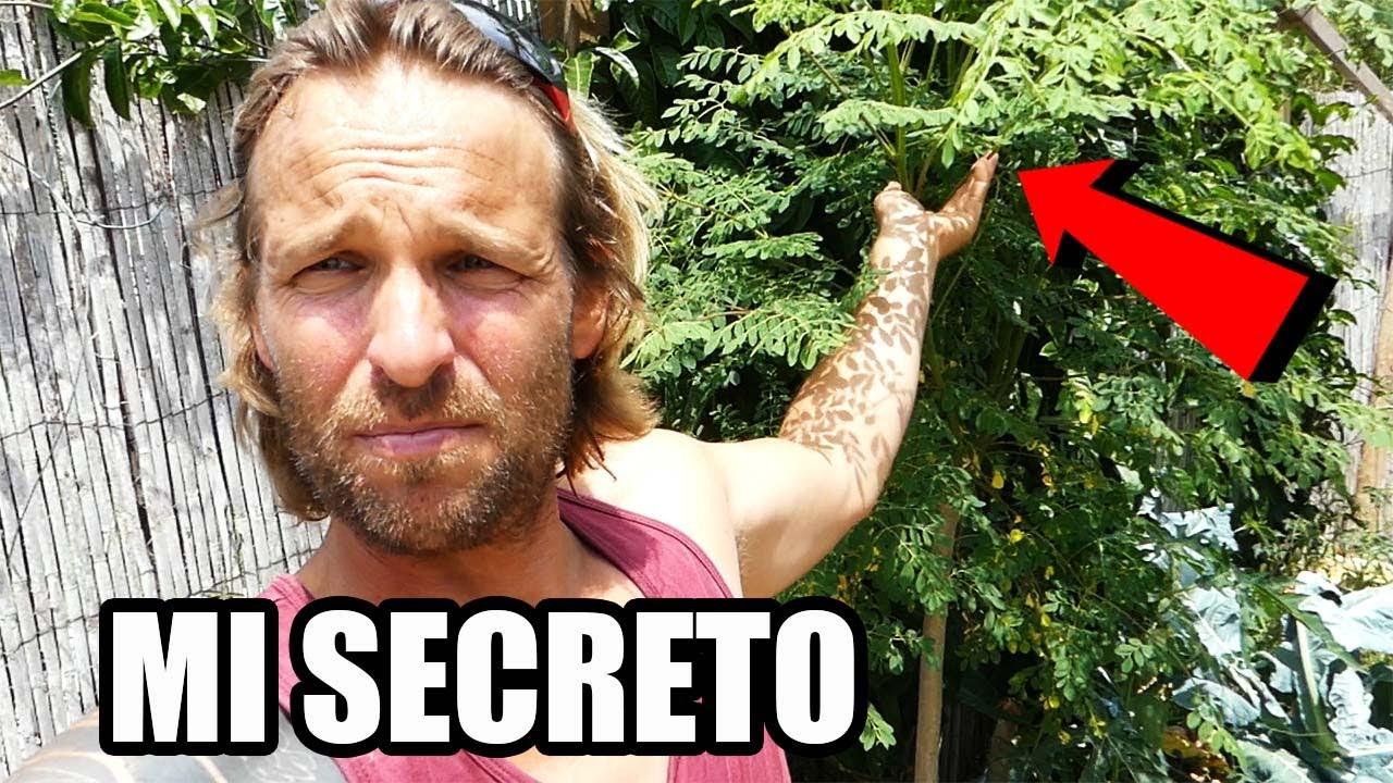 Mi Rincon Secreto 🚫 || No todo es Huerto Ecológico🌱