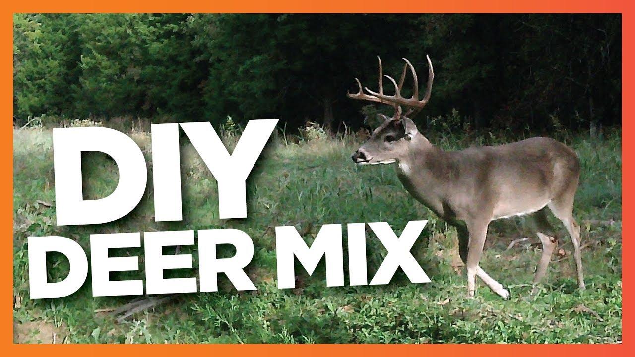 DIY Deer Attractant - YouTube