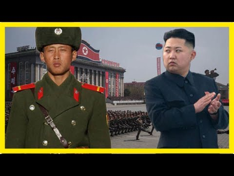 North korean soldiers 'starving as kim orders them into world war 3 training with no food'