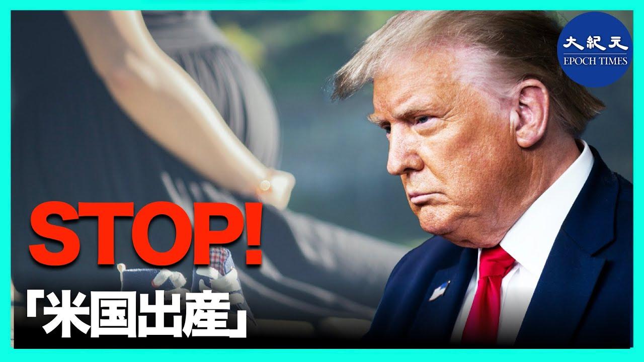 共同 ニュース 香港 大 新唐人 紀元