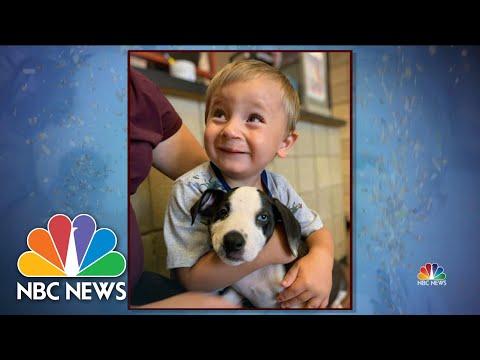 Boy, Puppy Bond Through Similar Struggle | NBC Nightly  News