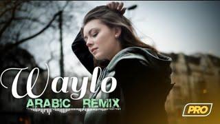 Arabic Remix - Waylo (Laziz Azimov & Hayit Murat Remix)