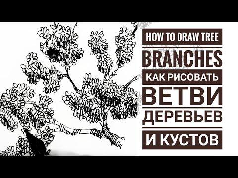 Скетчбук.  Скетчинг мастер класс для начинающих.Часть 3 Как рисовать ветви деревьев ? Эдуард Кичигин
