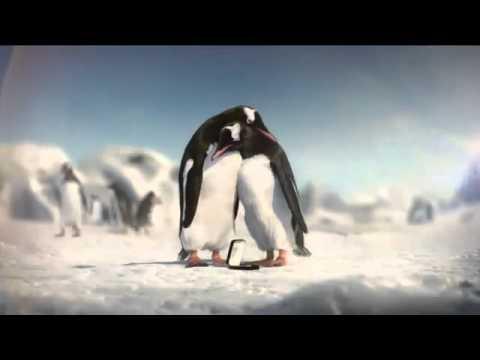 Penguin Kiss   Kay Jewelers Diamonds Commercial